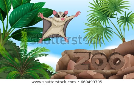 şeker uçan hayvanat bahçesi imzalamak örnek doğa Stok fotoğraf © bluering