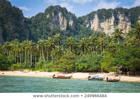 Krabi · tengerpart · Thaiföld - stock fotó © wetzkaz