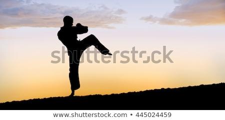 Vadászrepülő előad karate hozzáállás fehér nő Stock fotó © wavebreak_media