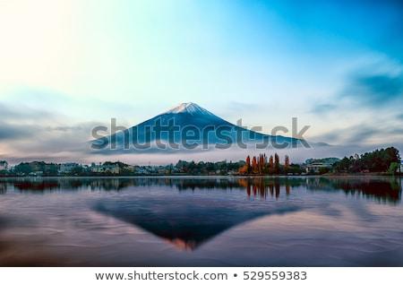 Mount Fuji winter bevroren meer sneeuw berg Stockfoto © craig