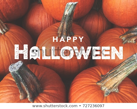 Happy Halloween Greeting Card with Pumpkin Jack Stock photo © Voysla