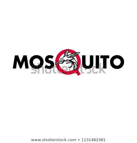 Sivrisinek metin maskot ikon örnek öfkeli Stok fotoğraf © patrimonio