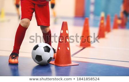 piłka · niebieski · dziedzinie · szkolenia - zdjęcia stock © matimix