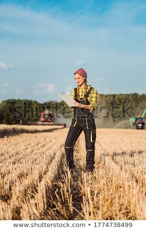 Stok fotoğraf: çiftçi · kadın · iş · ilerleme · hasat