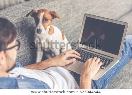 Friendly young man working on laptop at home. Stock photo © lichtmeister