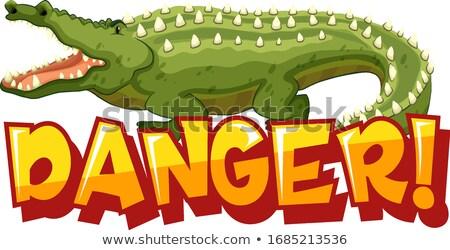 Foto stock: Fonte · projeto · palavra · perigo · grande · crocodilo
