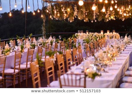 Recepção de casamento casamento cadeiras flores jardim cadeira Foto stock © timbrk