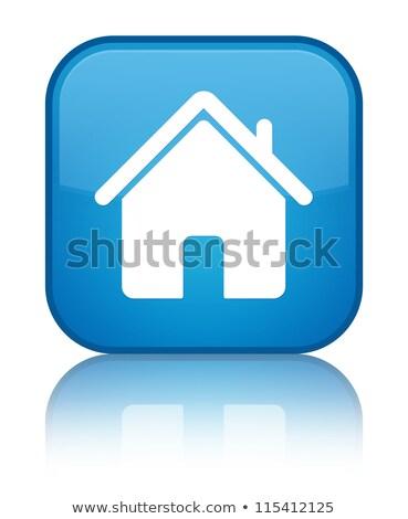 синий домой кнопки изолированный белый Сток-фото © cidepix