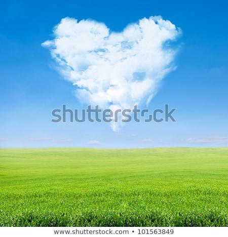 green field blue sky with cloudy heart stock photo © vkraskouski