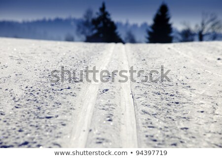 Stock photo: empty trails for cross-country skiing