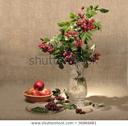 gyümölcsfa · ág · váza · piros · virágok · fából · készült · virág - stock fotó © boroda