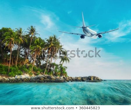 самолет Тропический остров вектора прибыль на акцию небе дерево Сток-фото © djdarkflower