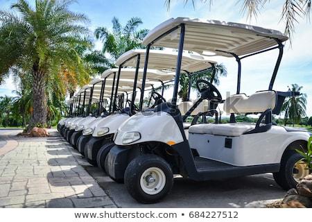 Golf araba golf sahası iş çim yaz Stok fotoğraf © chatchai