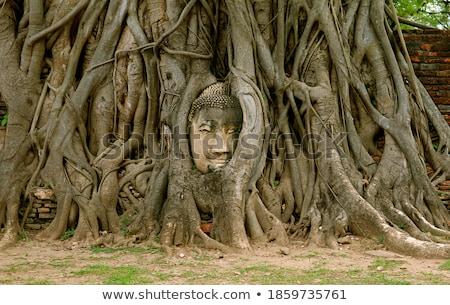 Head of a historical Sandstone Buddha Stock photo © bbbar