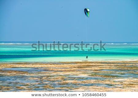 biały · łodzi · żeglarstwo · turkus · morza · piękna - zdjęcia stock © albund