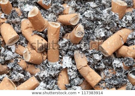 cigarette · cigarettes · fond · blanche - photo stock © lunamarina