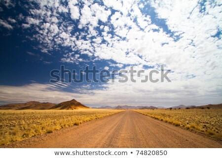 エンドレス · 道路 · ナミビア · 風景 · 自然 · 背景 - ストックフォト © frameangel