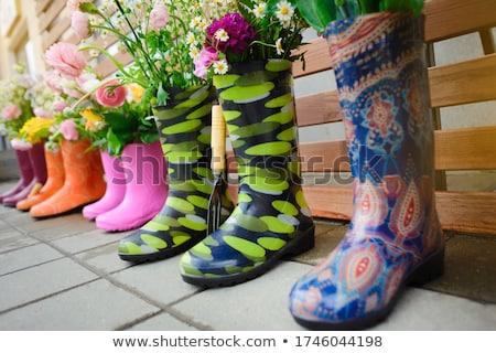 Gumicsizma különböző zöldség kertészkedés növekvő zöldségek Stock fotó © stevanovicigor