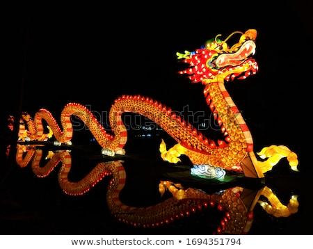 lagarto · escalada · ramo · colorido · secar · isolado - foto stock © smithore