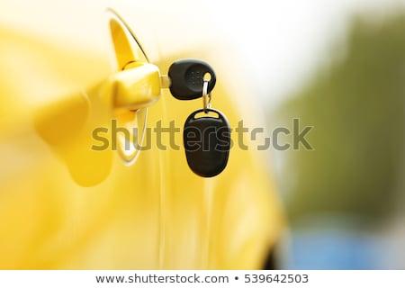 Foto stock: Clave · bloqueo · coche · neumático · primer · plano · horizontal