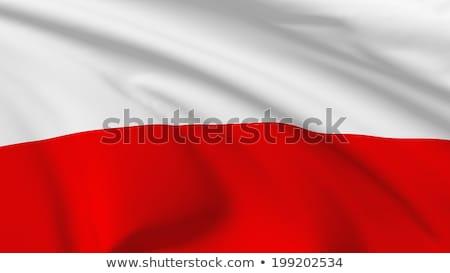 Бразилия Польша флагами головоломки изолированный белый Сток-фото © Istanbul2009