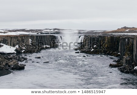 Part of the Selfoss in Iceland Stock photo © elxeneize