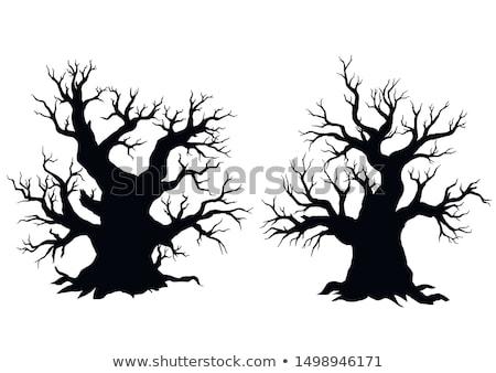 zestaw · sylwetki · odizolowany · biały · śmierci · czarny - zdjęcia stock © beholdereye