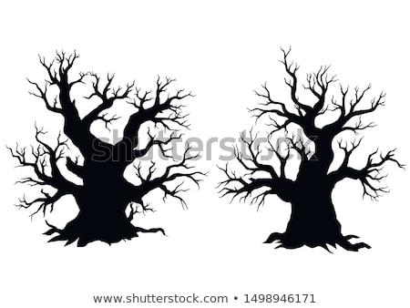 spooky tree silhouette vector isolated eps 8 stock photo © beholdereye