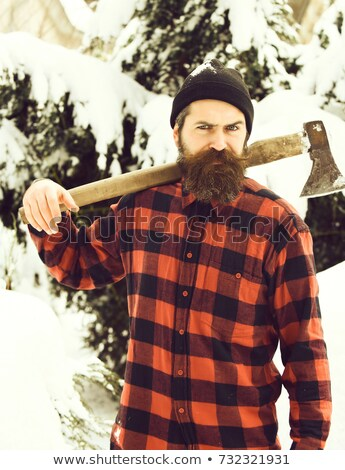 man in checkered shirt with axe standing at winter forest stock photo © deandrobot