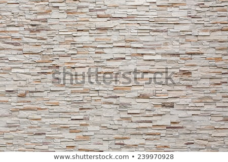 Shale wall background Stock photo © luissantos84