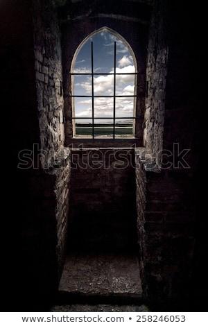 Janela castelo marrom velho cinza edifício Foto stock © mariephoto