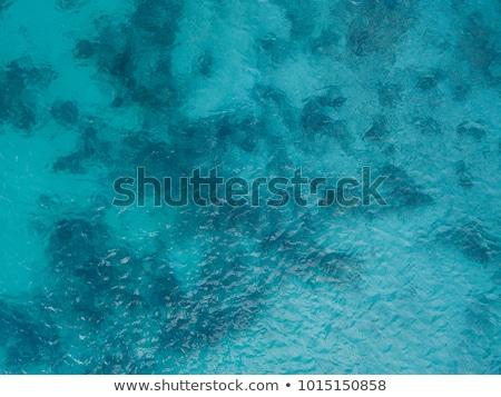 сцена мнение океана иллюстрация пейзаж фон Сток-фото © bluering