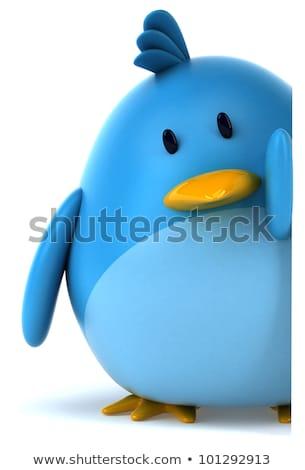 kék · madár · énekel · faág · mosoly · természet - stock fotó © sifis