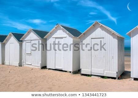 Stockfoto: Blauw · witte · strand · nederlands · hout · oceaan