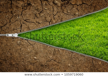 Zipper and summer landscape - nature concept 