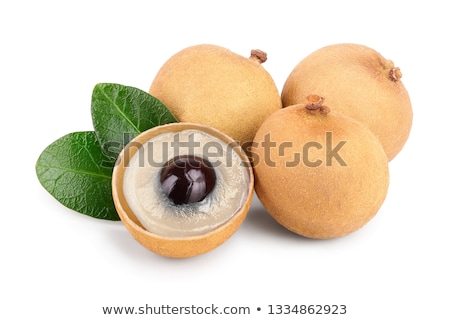 Green small longan fruit stock photo © Yongkiet