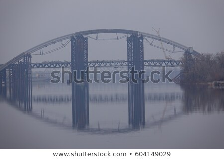 утра тумана Саскачеван дороги деревья цвета Сток-фото © pictureguy