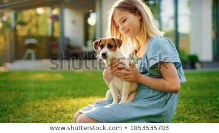 собака · собственность · торговых · собаки · мяча · животного - Сток-фото © ozgur
