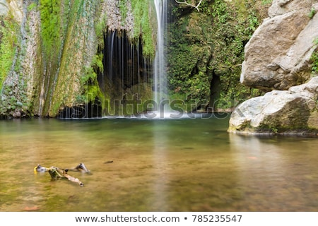 waterval · winter · Griekenland · hout · landschap · berg - stockfoto © ankarb