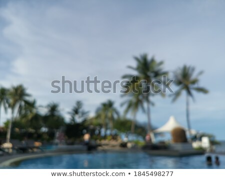 Private poolside as abstract summer background Stock photo © stevanovicigor