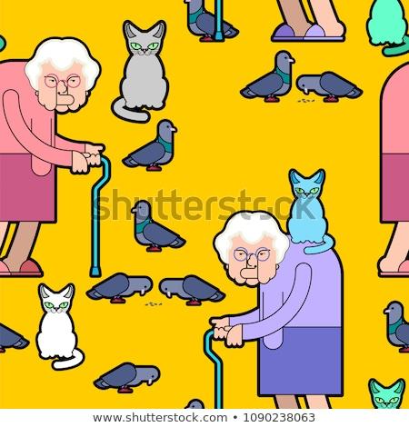 Grootmoeder oma kat goede oude dame duif Stockfoto © MaryValery
