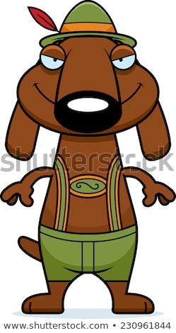 Sinsi karikatür daksund örnek köpek Stok fotoğraf © cthoman