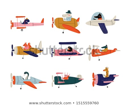 Rabbit flying an airplane Stock photo © bluering