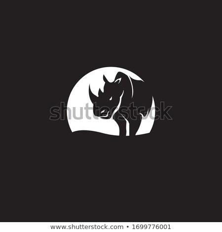 Orrszarvú fej kabala ikon illusztráció orrszarvú Stock fotó © patrimonio