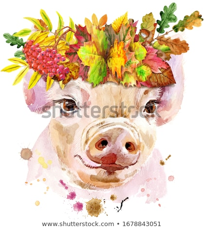 aquarela · retrato · porco · coroa · folhas · belo - foto stock © natalia_1947