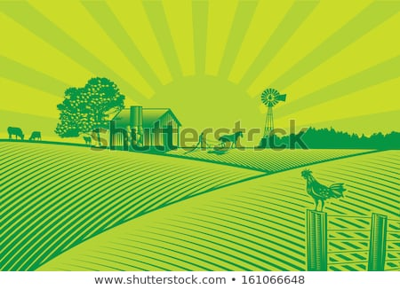 Farmer and chickens on windmill Stock photo © colematt