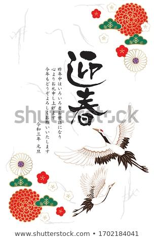 Pássaro ano novo cartão postal ilustração engraçado fogos de artifício Foto stock © adrenalina