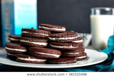 Ice Cream Sandwich with dark chocolate cookies on white background.Macro Stock photo © DenisMArt