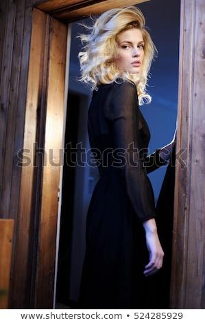 elegáns · elegáns · szőke · nő · szépség · gazdag · belső - stock fotó © dash