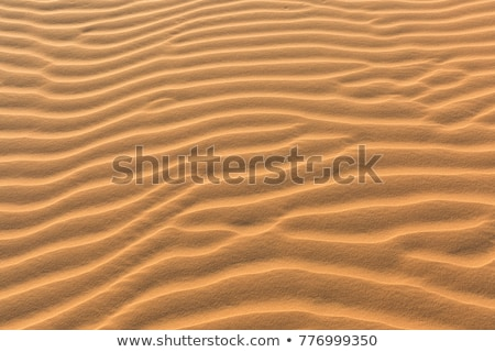 Yellow sand in the desert, Vietnam Stock photo © galitskaya